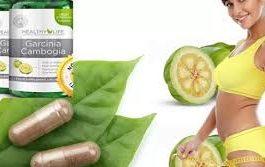 Healthy life garcinia cambogia - kräm - ingredienser - åtgärd