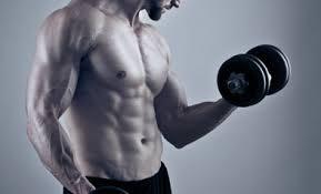 Testofen - för muskelmassa - Pris - ingredienser - Forum
