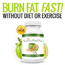 Garcinia Total Diet - funkar det - Forum -åtgärd