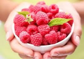 Raspberry Ketone - för bantning - recensioner - resultat - åtgärd
