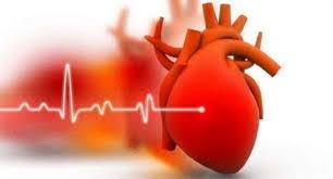 Provinas Patches - för högt blodtryck - Pris - ingredienser - Forum
