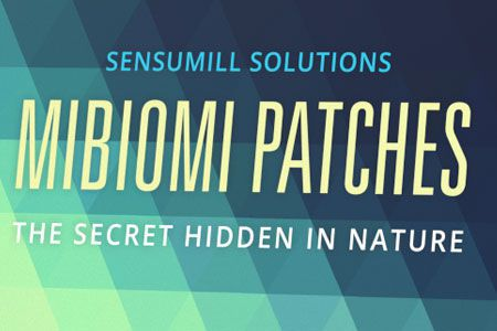 Mibiomi Patches - för bantning - sverige - nyttigt - apoteket